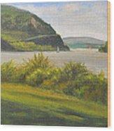 Hudson River At Cold Spring Wood Print