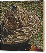 Hula Hats 6 Wood Print
