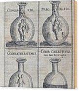 Human Development, 17th Century Artwork Wood Print
