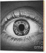 Human Eye Wood Print by Elena Elisseeva