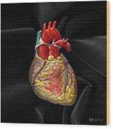 Human Heart On Black Velvet Wood Print