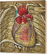 Human Heart Over Vintage Chart Of An Open Chest Cavity Wood Print