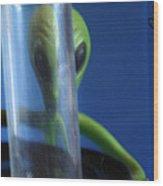 Aliens Stink At Hide And Go Seek Wood Print