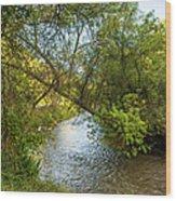 Humber River 2 Wood Print