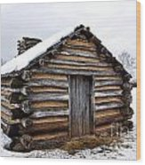 Humble Shelter Wood Print by Olivier Le Queinec