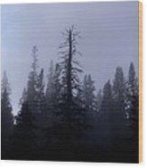 Humbled Giant Wood Print