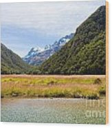 Humboldt Mountains Seen From Routeburn Track Nz Wood Print
