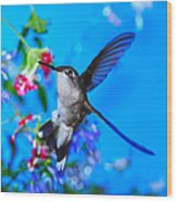 Hummer And Flowers On Acrylic Wood Print