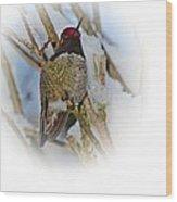 Humming Bird And Snow 4 Wood Print