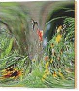 Humming Bird Digital Art Wood Print