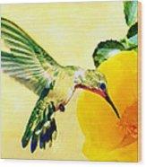 Hummingbird And California Poppy Wood Print