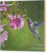 Hummingbird And Fuschia Wood Print