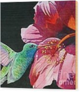Hummingbird And Hibiscus Wood Print by Robert Hooper