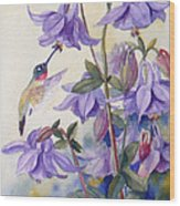 Hummingbird And Purple Columbine Wood Print