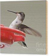 Hummingbird At The Feeder Wood Print