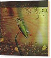 Hummingbird At The Pond Wood Print