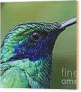 Hummingbird Closeup Wood Print