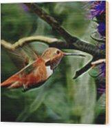 Hummingbird Dreams Digital Art Wood Print