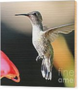 Hummingbird Happiness Wood Print