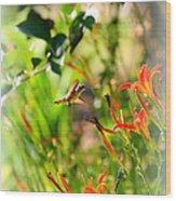 Hummingbird In The Daylilies Wood Print