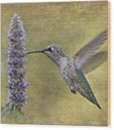 Hummingbird In The Mint Wood Print
