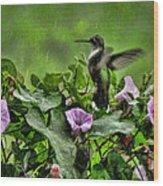 Hummingbird In The Rain Wood Print