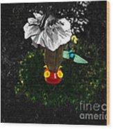 Hummingbird In The Spotlight Wood Print by Al Bourassa