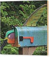 Hummingbird Mailbox Wood Print