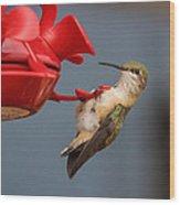 Hummingbird On Feeder Wood Print