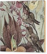 Hummingbirds And Orchids Wood Print