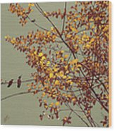 Hummingbirds On Yellow Tree Wood Print
