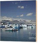 Hundreds Of Icebergs Wood Print