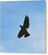 Hungry Bird Wood Print