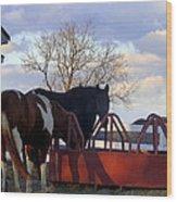 Hungry Horses Wood Print
