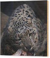 Hungry Leopard Wood Print