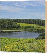 Hunter River Beauty Wood Print