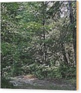 Hunter's Dam #2 Wood Print
