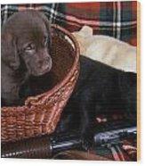 Hunters Puppy Dreams Wood Print