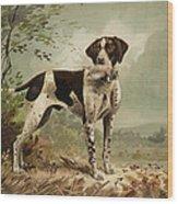 Hunting Dog Circa 1879 Wood Print by Aged Pixel