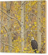 Hunting From An Aspen Wood Print