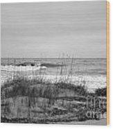 Hunting Island Beach In Black And White Wood Print
