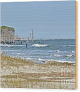 Hunting Island State Park Wood Print
