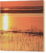 Hunting Island Tidal Marsh Wood Print by Mountains to the Sea Photo