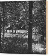 Hunting... Wood Print
