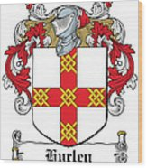 Hurley Coat Of Arms Munster Ireland Wood Print