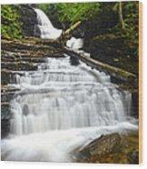 Huron Falls Wood Print