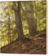 Huron National Wood Print