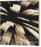 Huron Ohio Fireworks 8 Wood Print by Jackie Bodnar