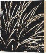 Huron Ohio Fireworks 9 Wood Print