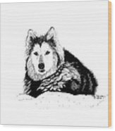 Huskie In The Snow Wood Print